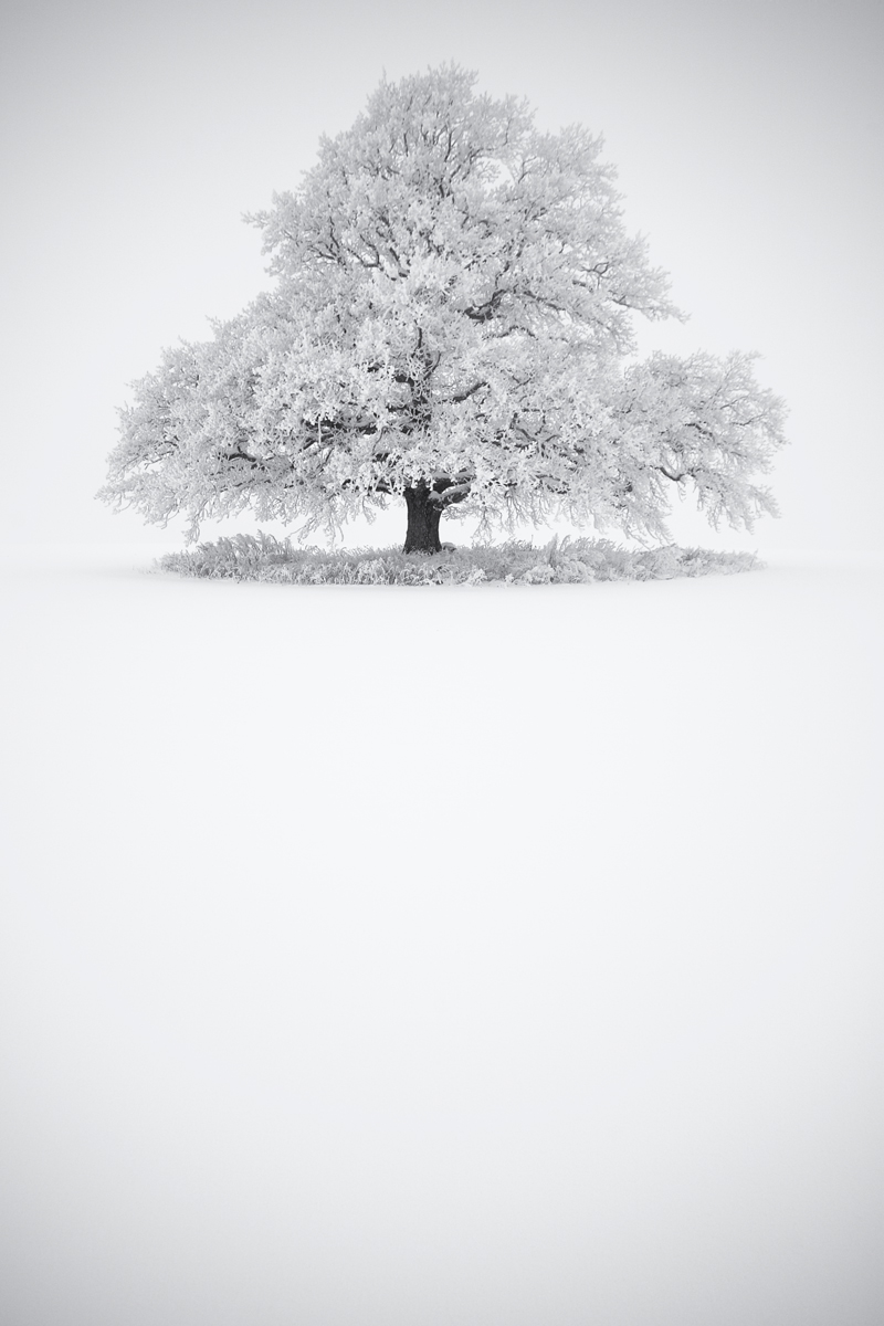 © Erlend Grøseth - Whiteout