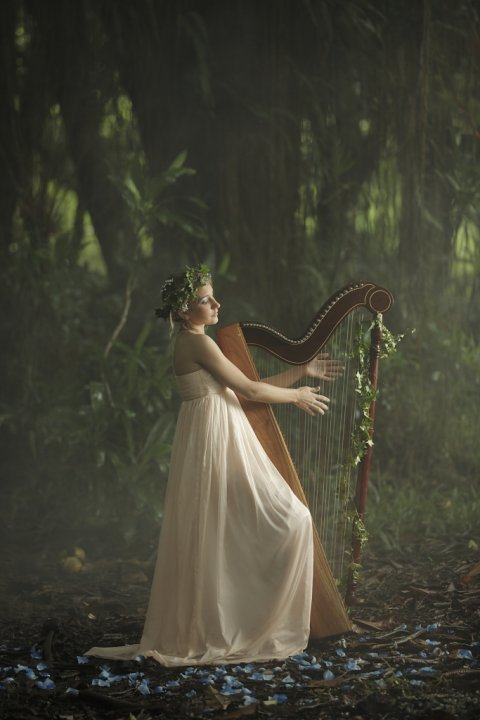 © Kunal Jankee - the girl playing on harp