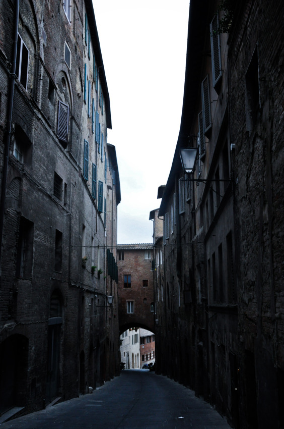 © Maria Zak - After tourists it's so quiet in Sienna...